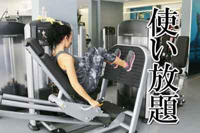 トレーニングマシン使い放題